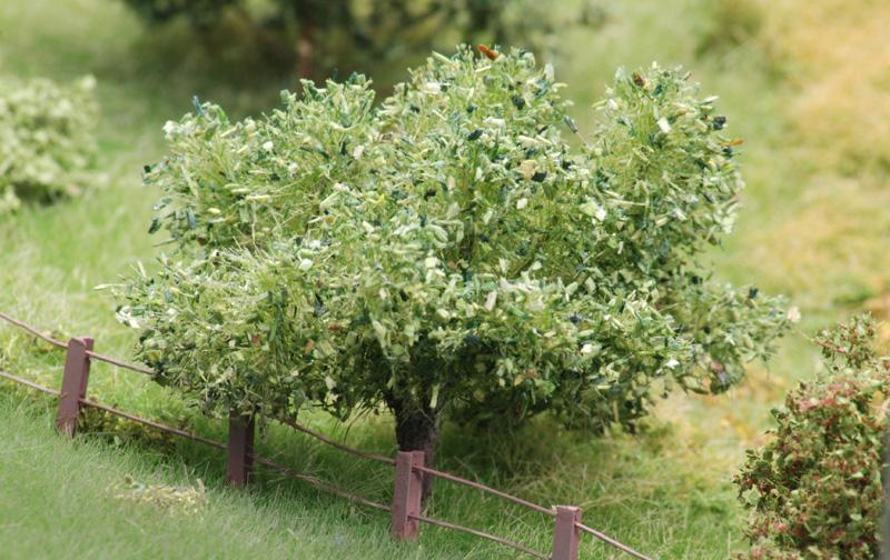 Baumbau