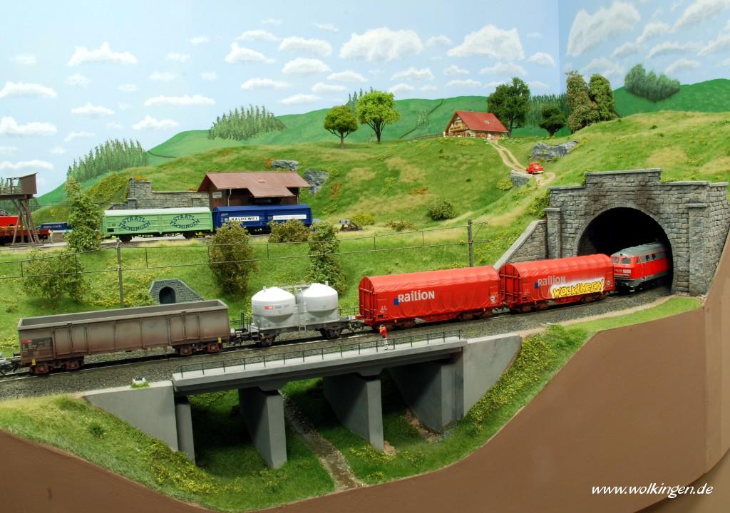 Wildwiese - Güterzug