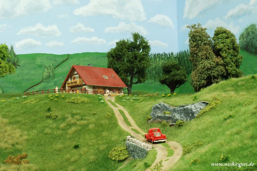 Wildwiese - Weg zum Ferienhaus